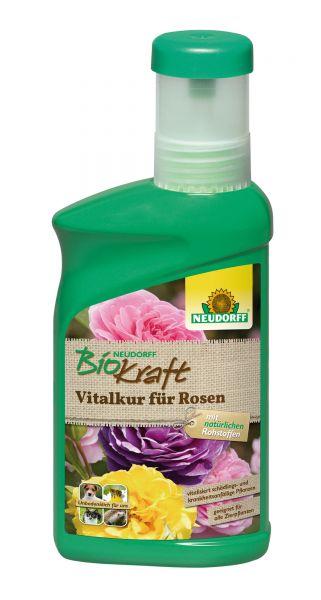 Neudorff BioKraft Vitalkur für Rosen