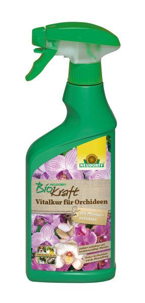 Neudorff BioKraft Vitalkur für Orchideen (anwendungsfertig)