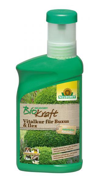Neudorff BioKraft Vitalkur für Buxus & Ilex